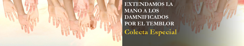 banderola-colecta-damnif-B