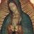 Homilía de Mons. Eugenio Lira para el día de Nuestra Señora de Guadalupe